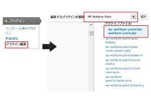 WP_Multibyte_Patch